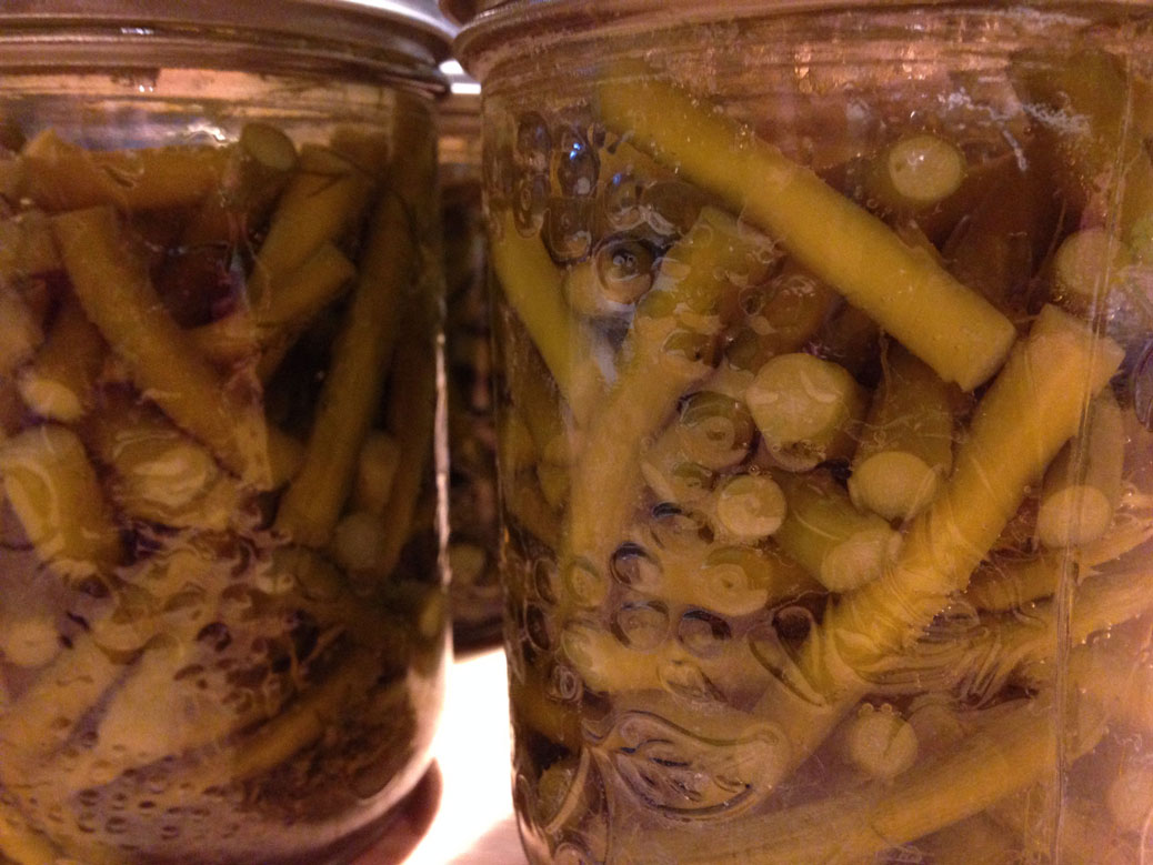 Dill pickled garlic scapes